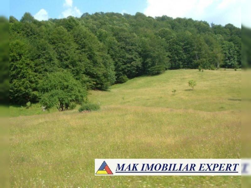 1036932_teren-dambovicioara-arges-6700-mp-la-45000-mp-proprietar_1.jpg